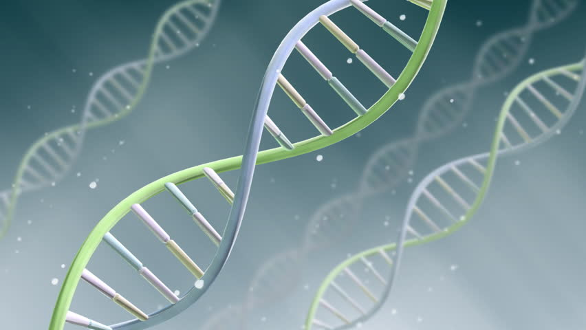 DNA Strand. - HD stock footage clip