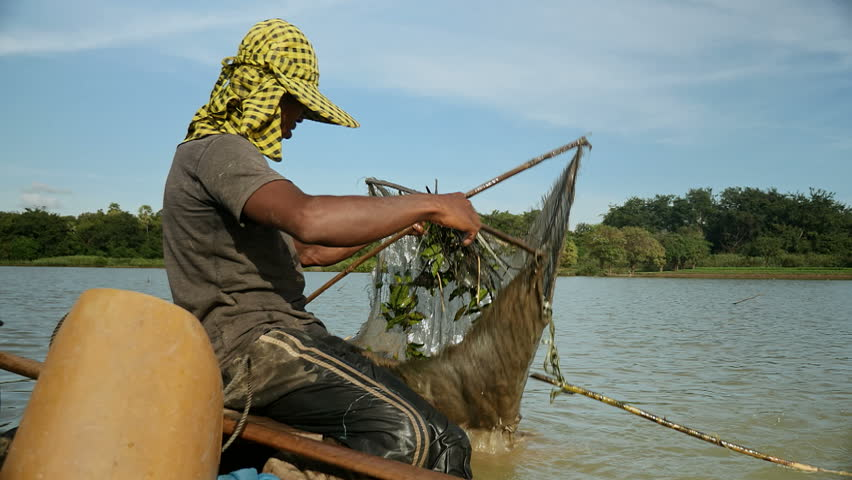 fisherman lifts his net up for prawn fishing. The shrimp net is square that was made by four bamboo sticks, southeast asia, Cambodia.