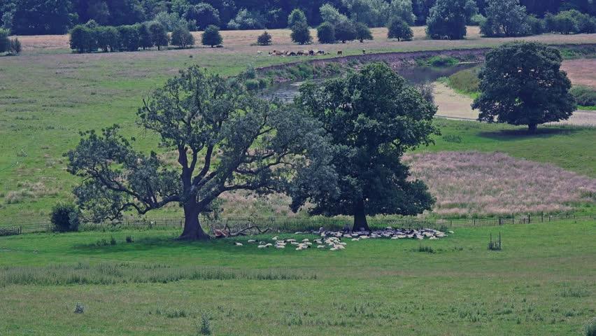 english countryside landscape old - photo #15