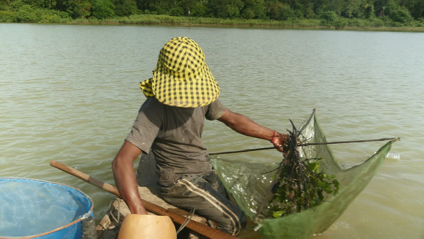 Prawn fisherman in dugout canoe dropping net and pushing it deeper into river with paddle for a catch,  southeast asia, cambodia
