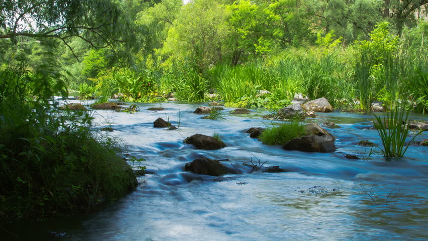 forest stream time lapse, Stream Water and Green Mossy Rocks, mountain stream time lapse 4K, Moss On The Rocks Forest Stream, Forest river, Water runs quickly through the rapids - 4K stock footage clip