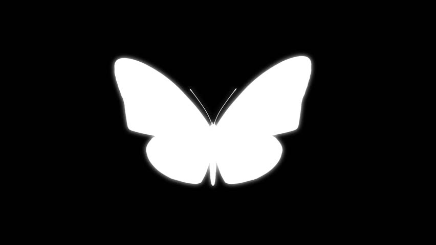 Many White Butterflies Flying Up Stock Footage Video ...