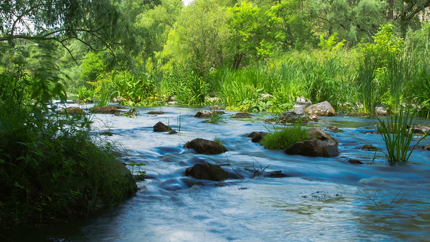 forest stream time lapse, Stream Water and Green Mossy Rocks, Moss On The Rocks Forest Stream, Forest river, Water runs quickly through the rapids, Granite boulders with river - HD stock footage clip