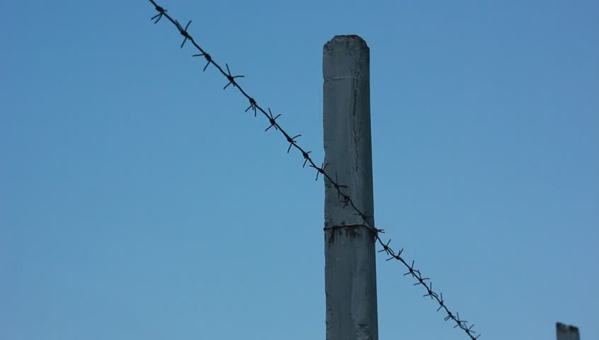 barb wire fence clip - photo #27
