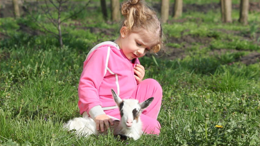child and little goat pet - HD stock video clip