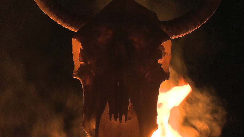Cow Skull with Flames and Fire - Clip 2 - HD stock video clip