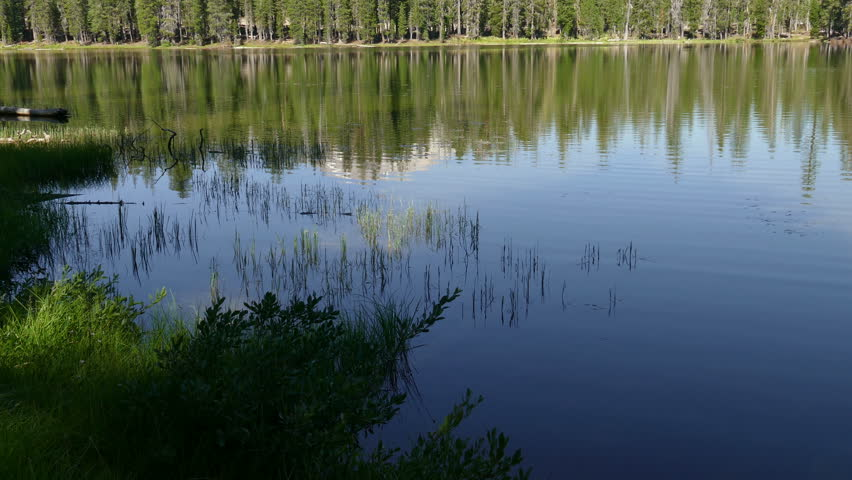 Forest of trees reflected in a lake at Lassen Volcanic National Park in California, America.