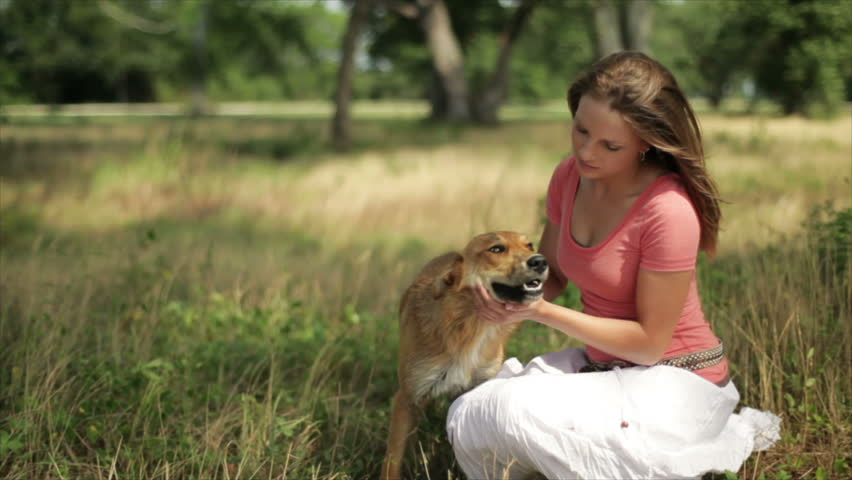 A pretty girl in a wooded field kneeling down petting her dog on a very windy day. - HD stock video clip