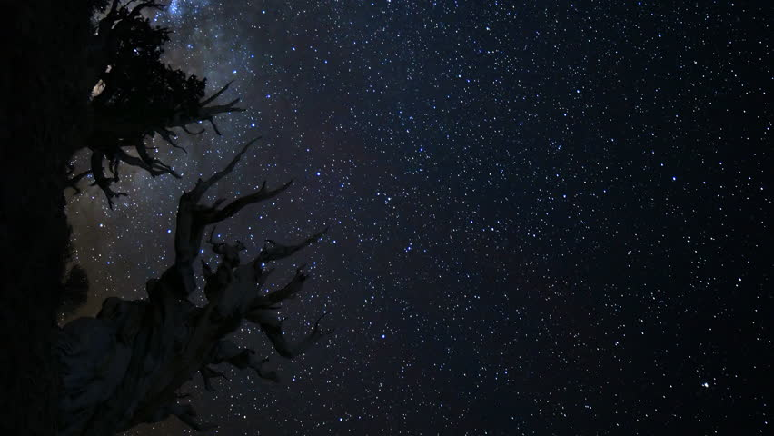 Astrophotography Time-lapse footage of milky way galaxy rising over the oldest living trees at dawn in Ancient Bristlecone Pine Forest in White Mountain, California -Vertical Shot-