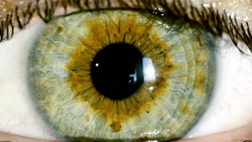 Female green eye close up extreme macro,iris contracts.HD real time extreme close up shot of the wide open human eye of a female.The iris is contracting.
