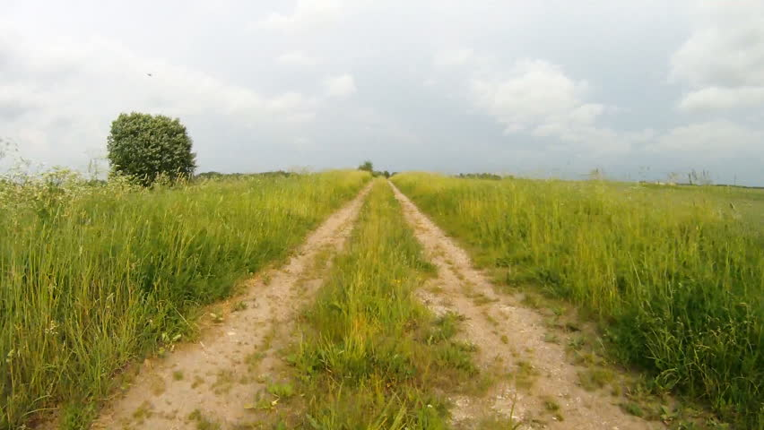 road through the meadow