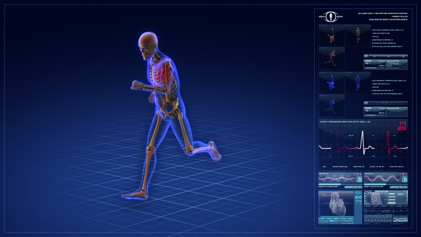 Running skeleton. Futuristic body scan animation. Complex medical computer interface with heart monitor. Seamless loop.