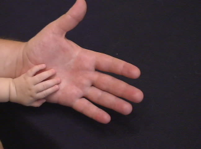 Baby and father hands.Stock video of baby and father hands. - SD stock video clip