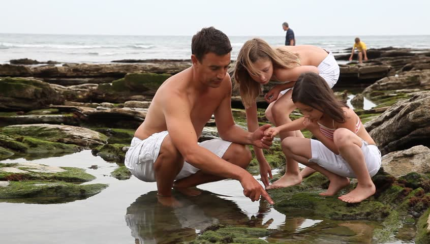 Father with kids shellfishing at low tide
