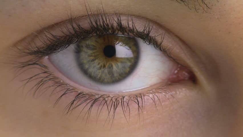 Natural Light Blue Eyes Close Up