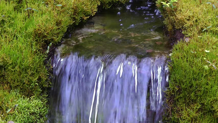 A small waterfall surrounded by green moss in a