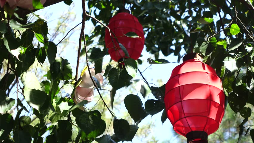 Red paper lantern swings in the wind