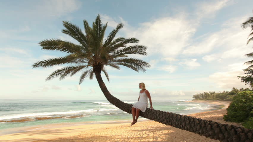 Cinemagraph - Woman sits on palm tree overlooking tropical beach. Looping Motion Photo.