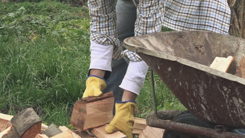 lumberjack loading wood logs to wheelbarrow in backyard stock footage