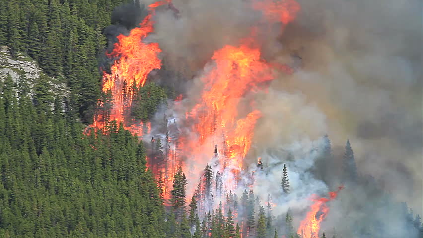 Huge flames and smoke of a forest fire in the Rocky Mountains