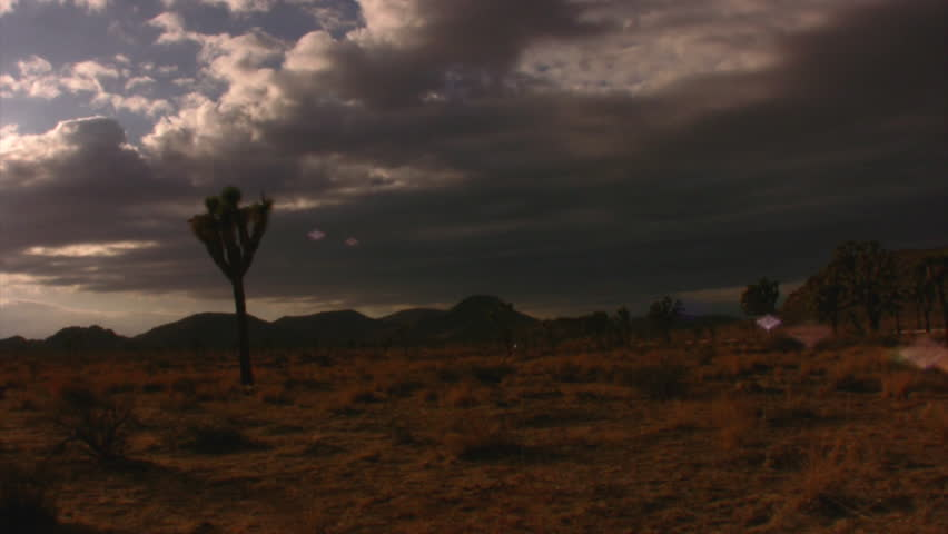 Joshua Tree Sunset 01 Motion control time lapse Pan Tilt Up California USA - HD stock footage clip