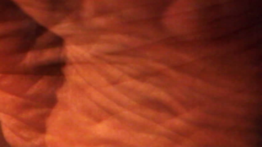 A close-up, strange composition of a human foot and  skin. - HD stock video clip