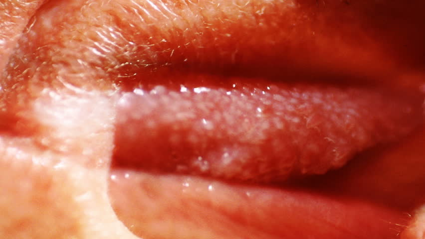 A close-up, strange composition of a human tongue. - HD stock video clip