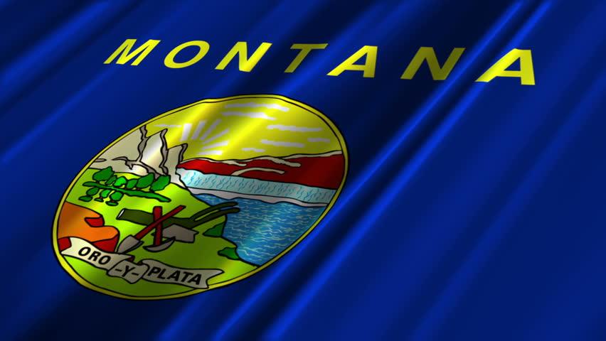 Montana Flag Loop 2 - HD stock video clip