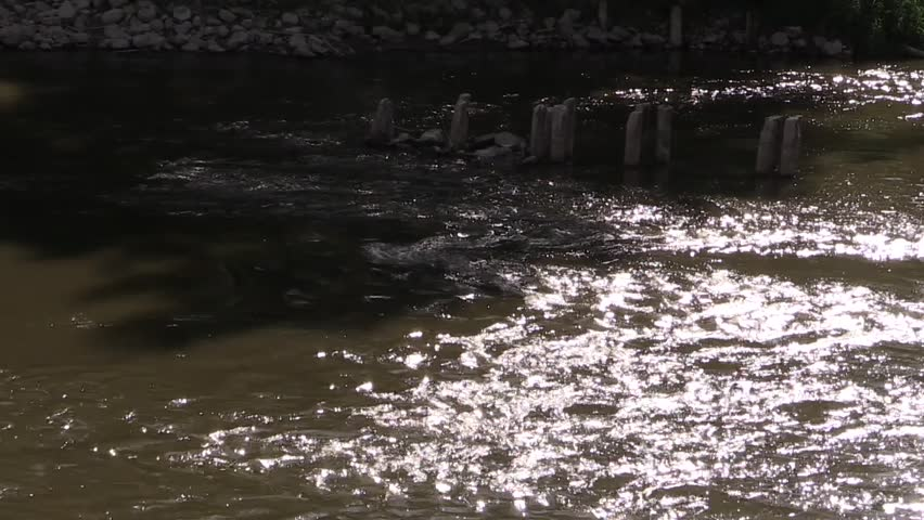 Bug River in Brest Fortress - HD stock footage clip