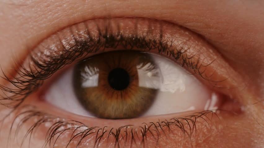Macro shot of a brown woman eye - 4K stock video clip