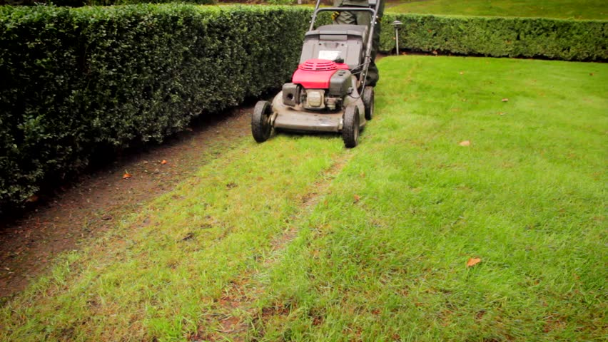 Lawn mower cutting the grass - HD stock footage clip