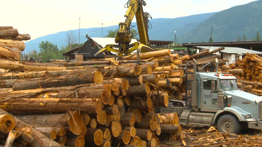 logging truck and tractor
