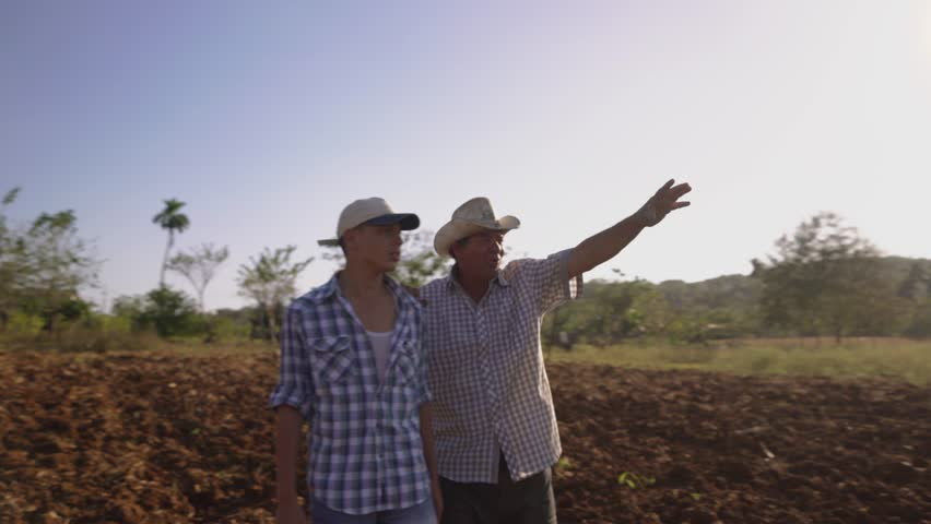 Farming and cultivations in Latin America. Hispanic farmer walking with his son in a cultivated field at sunset. The man embraces the teenager and plan the job to be done. Steadicam shot  | Shutterstock HD Video #15478027