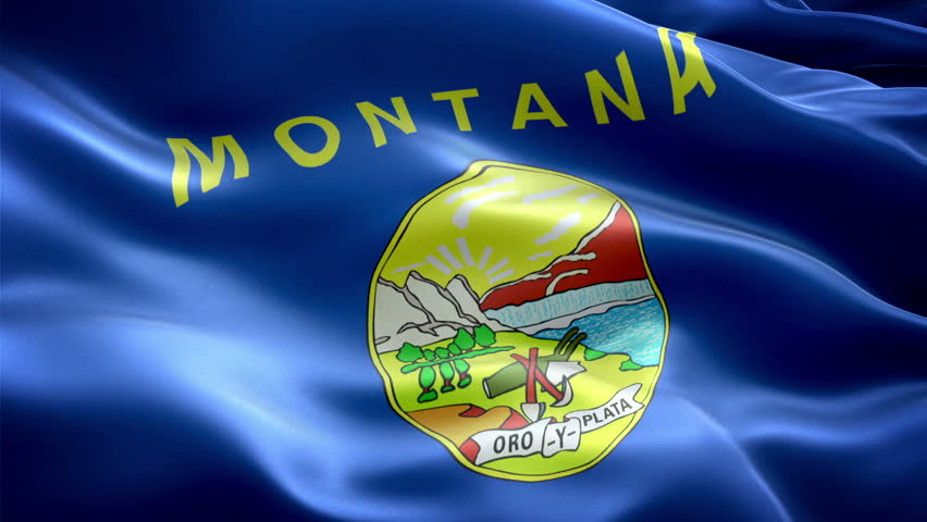 This is the surging effected flag of Montana which is a state of united states - HD stock footage clip
