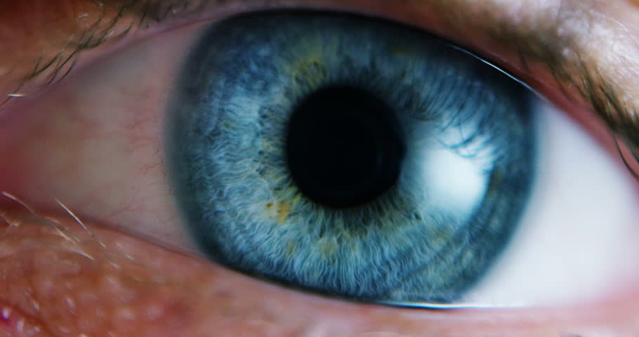 Close-up Macro Shot of male Human blue green Eye Blinking  | Shutterstock HD Video #16056259