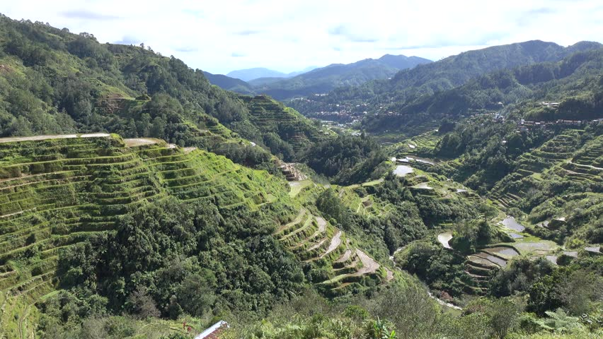 Terraced rice fields in Ifugao, Philippines