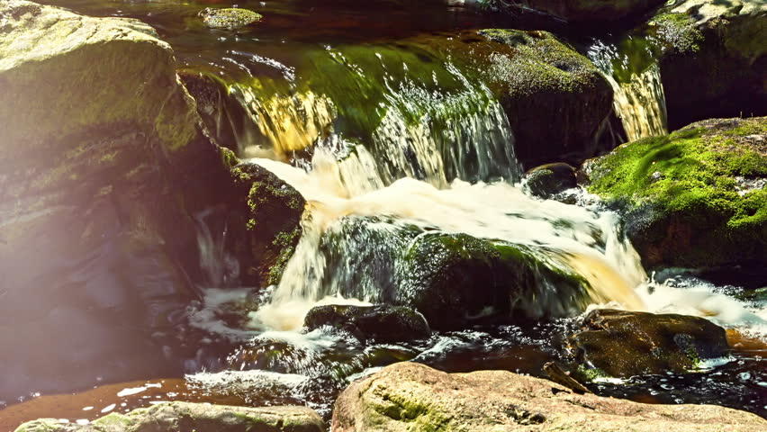 Summer landscape with forest stream. Nature background. Full HD, 1080p - HD stock video clip