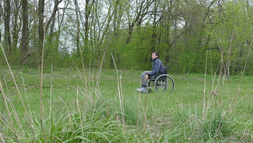 disabled  man wheelchair with laptop in wheelchair working on nature green background - 4K stock video clip