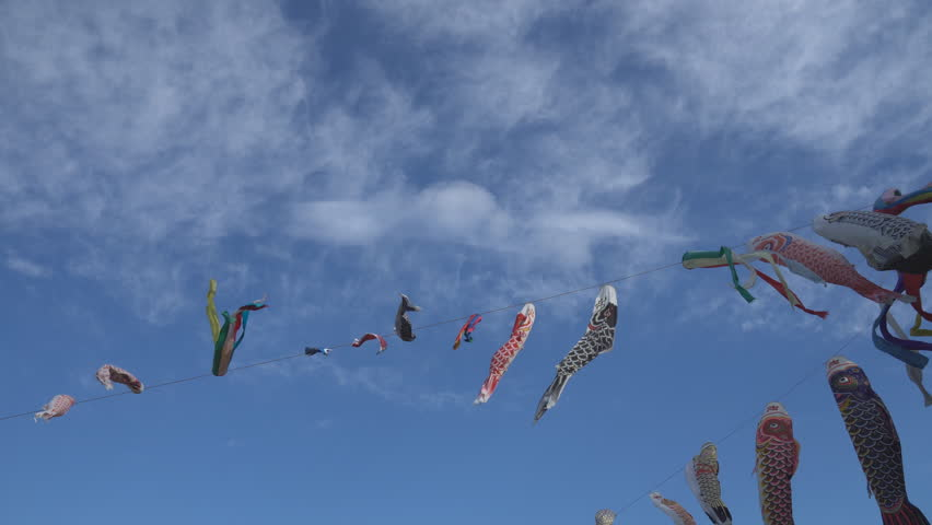 carp-shaped streamers called 'koi-nobori' to celebrate Japan's Children's Day, May 5th - HD stock footage clip