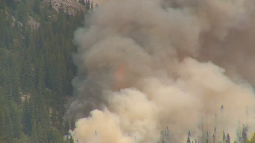 21-18 Mountain forest fire, Mt Buller #18, huge flames and smoke - HD stock footage clip