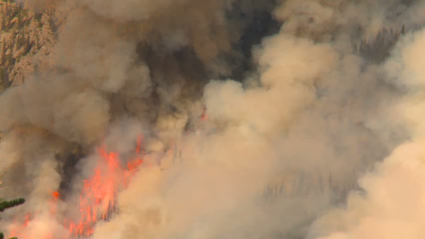 Mountain forest fire, Mt Buller #114, huge flames and smoke medium - HD stock video clip