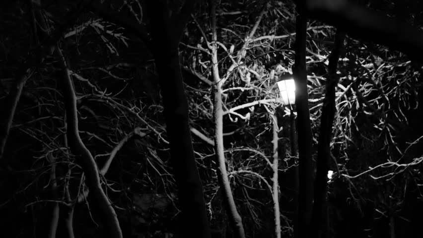 Night Winter Street Lamp snow is melting black and white footage 3 - HD stock footage clip
