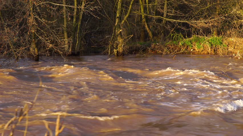 Flash flood muddy river fast flowing. Flood river rushes, river raging. Natural disasters, stormy swollen river. Brown water flow. - 4K stock video clip