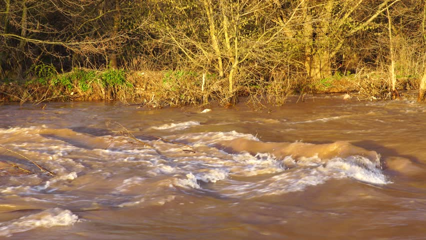 Flash flood muddy river fast flowing. Flood river rushes, river raging. Natural disasters, stormy swollen river. Brown water flow. - 4K stock footage clip