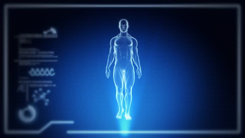 Human Full Body Male Anatomy Walking with Touch Screen Scan in 3D x-ray. Realistic Horizontal CRT Scanlines - LOOP | Shutterstock HD Video #17239984