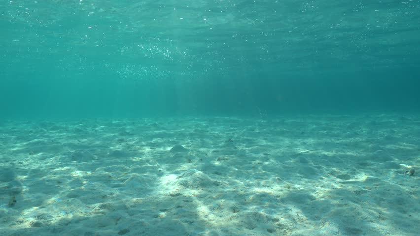 Underwater Hd Video Of Dappled Sunlight On Ocean Floor