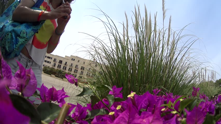 Beautiful touristic girl in sunglasses taking photo of purple flowers on her smartphone cell phone, Novaedat Can Picafort, Majorca, Spain, portrait shoot - 4K stock video clip