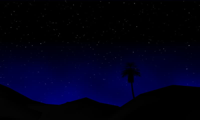 Footage of stars coming night in tree   Shutterstock HD Video #176713