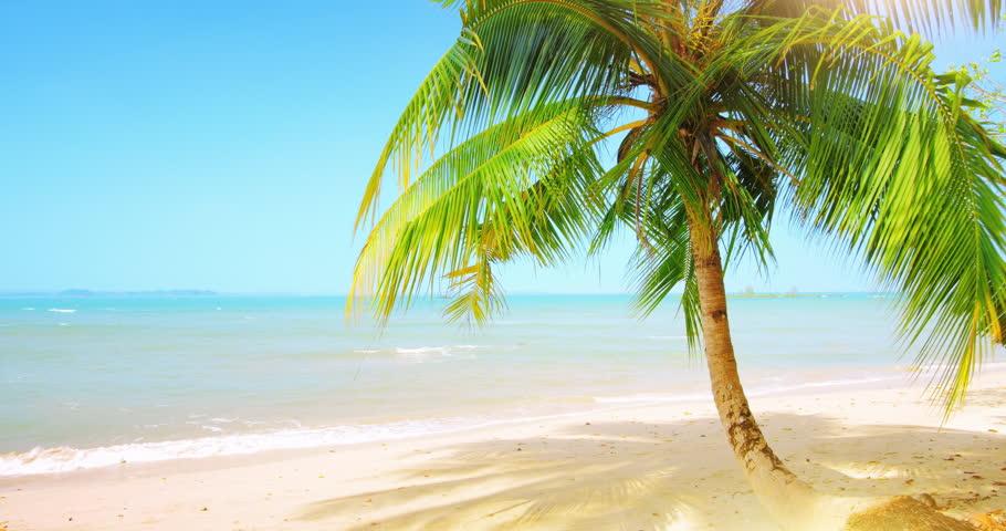 Hd Tropical Island Beach Paradise Wallpapers And Backgrounds: Tropical Paradise Background Of Beautiful Waterfall