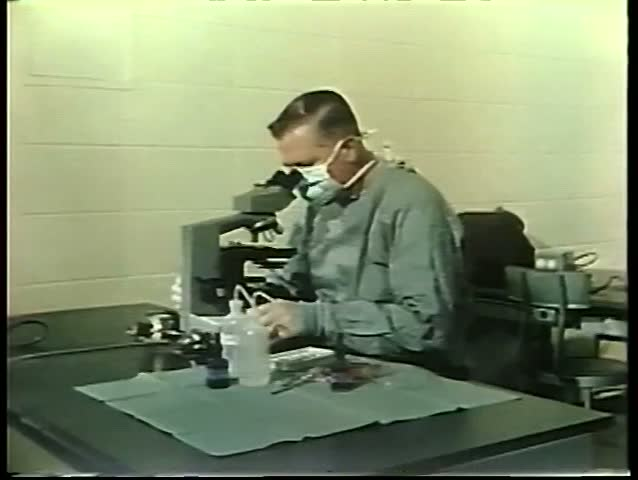 Panning lab technicians at work with microscopes